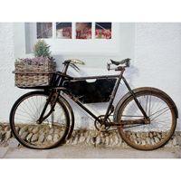 tela-impressa-bike-com-flor-preta-113x85x4cm-fullway-tela-impressa-bike-com-flor-preta-113x85x4cm-fullway-35313-0png