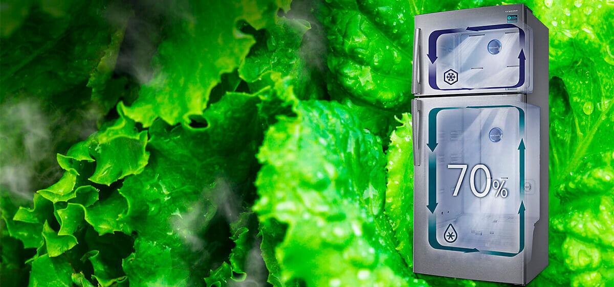 Alimentos frescos - Refrigerador RT6000K