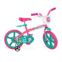bicicletaaro14gatinhabandeirante