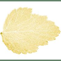 lugar-americano-autumn-leaf-da-lyor-plastico-pvc-38-x-38-cm-dourado-7431-lugar-americano-autumn-leaf-da-lyor-plastico-pvc-38-x-38-cm-dourado-7431-59222-0